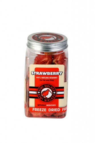 FDT-361_FreezeDried_Strawberry_1.jpg
