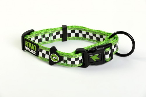 00329-RACING DOG COLLAR-green WO.JPG