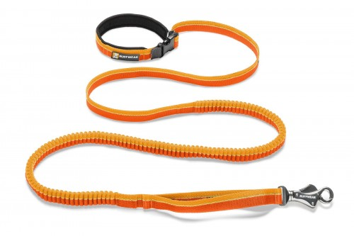 Web-40354-Roamer-Leash-Orange-Sunset.jpg