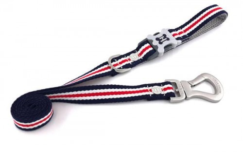 stripe-collar-Leash-copy-5_grande.jpg